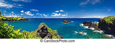 τροπικός , οκεανόs , ακτογραμμή , χαβάη