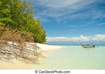 τροπικός , σιάμ , άμμος ακρογιαλιά , θάλασσα