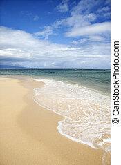 τροπικός , hawaii., παραλία , maui