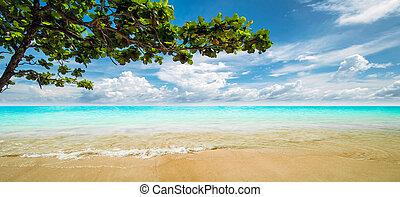τροπικός , lagoon., θέρετρο , πανόραμα