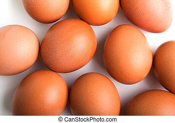 τροφή , αυγό