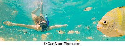 υποβρύχιος , γυναίκα , σημαία , σχήμα , νέος , μακριά , οκεανόs , τροπικός , κολύμπι , ευτυχισμένος