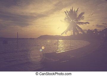 φίλτρο , ηλιοβασίλεμα , αποτέλεσμα , βάγιο , θαλασσογραφία , δέντρο , κρασί