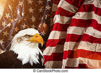 φαλακρός αετόμορφο αναλόγιο , με , αμερικανός , flag.