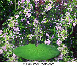 φαντασία , νεράιδα , lilly , βαδίζω , φόντο