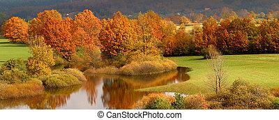 φθινόπωρο , έγχρωμος , δέντρα