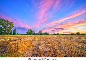 φθινόπωρο , αγροτικός , ηλιοβασίλεμα , τοπίο