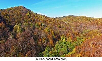 φθινόπωρο , βουνήσιοσ.