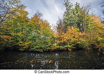 φθινόπωρο γραφική εξοχική έκταση , δέντρα , γραφικός , πέφτω