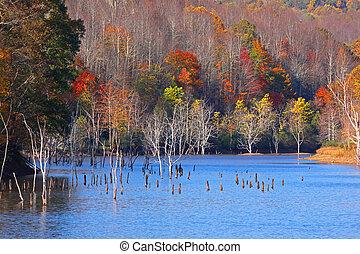 φθινόπωρο , λίμνη , δέντρα