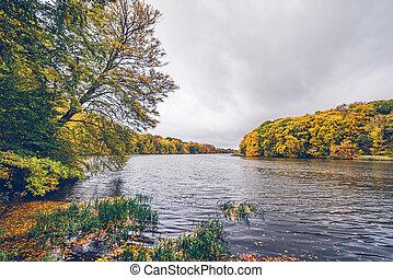 φθινόπωρο , μπογιά , τριγύρω , δέντρα , λίμνη