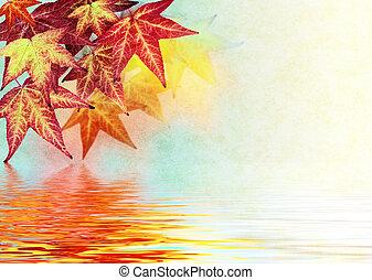 φθινόπωρο φύλλο , αντανάκλαση