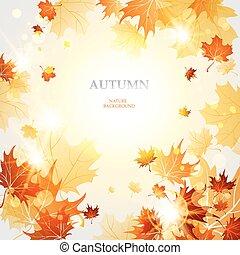 φθινόπωρο φύλλο , φόντο , σφένδαμοs
