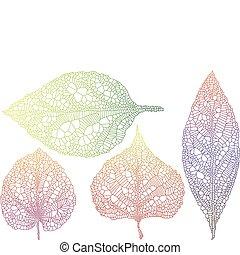 φθινόπωρο φύλλο , textured