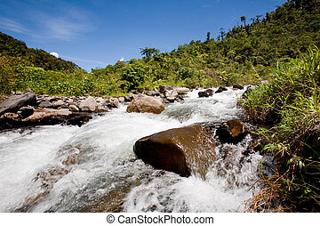 φρέσκος , βουνό , ποτάμι