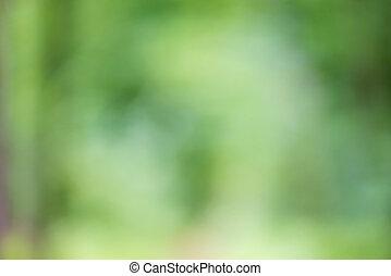 φρέσκος , θολός , αγίνωτος φόντο , φύση