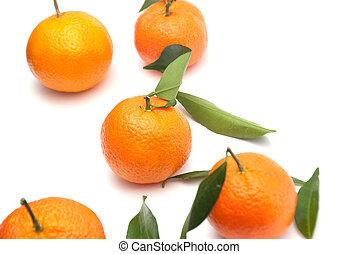 φρούτο , μανταρίνι