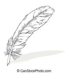 φτερό , γράψιμο