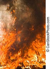 φωτιά , αριννύς