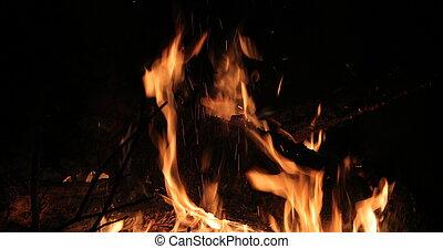 φωτιά , φλεγόμενος , ευφυής , ζεστός , ξύλο , νύκτα