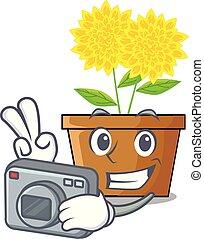 φωτογράφος , δάλια , λουλούδι , μέσα , ο , γουρλίτικο ζώο ,...