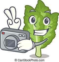 φωτογράφος , σχήμα , πράσινο , μουστάρδα , γελοιογραφία