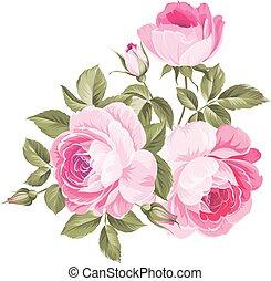 φόντο , με , roses.