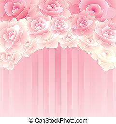 φόντο , τριαντάφυλλο