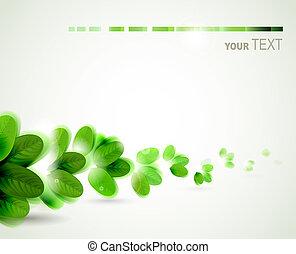 φύλλα , πράσινο