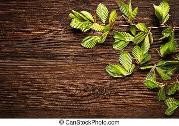 φύλλα , φόντο