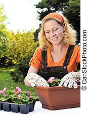 φύτεμα , γυναίκα , κηπουρική , - , νέος , λουλούδια