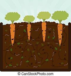φύτεμα , κοπρόχωμα , καρότα