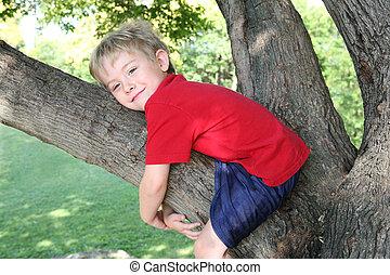 χαμογελαστά , αγόρι , αγαπώ , ένα , δέντρο