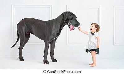 χαριτωμένος , μικρός , πελώρια , σκύλοs , κορίτσι , παίξιμο
