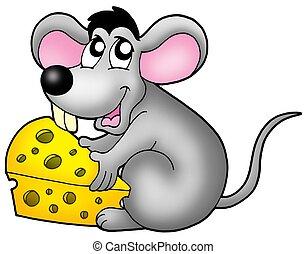 χαριτωμένος , ποντίκι , κράτημα , τυρί