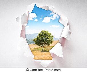χαρτί , διαμέσου , τρύπα , μοναχικός , δέντρο