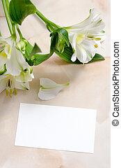 χαρτί , λουλούδια , κάρτα , κενό