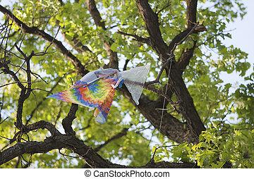 χαρταετόs , πρλθ. του catch , δέντρο