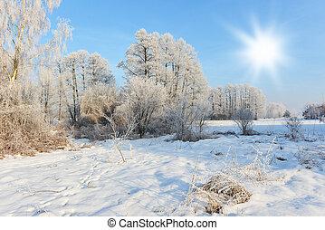 χειμερινός γραφική εξοχική έκταση