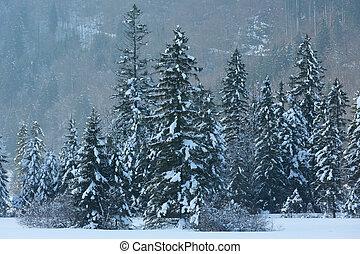 χειμώναs , βουνήσιος γραφική εξοχική έκταση