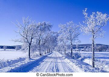χειμώναs , δρόμος