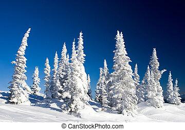 χειμώναs , ημέρα
