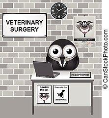 χειρουργική , κτηνιατρικός