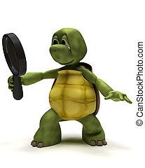 χελώνα , witha, μεγεθυντικός φακός