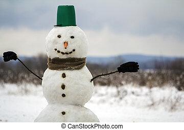 χιονάνθρωπος , βγάζω τα κουκούτσια , κεφάλι , χειμώναs , μύτη , πράσινο , έξω , κουβάς , μάτια , xριστούγεννα , δύση , year., καρότο , μαύρο , καινούργιος , πορτοκάλι , πορτραίτο , άσπρο , του , ευτυχισμένος