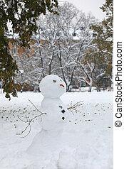 χιονάνθρωπος , καρότο , όπλα , braches, μύτη