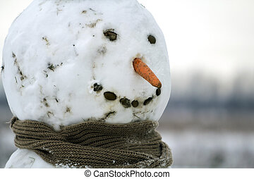 χιονάνθρωπος , πρωτόγονος , κεφάλι , θολός , καρότο , χαμογελαστά , αστείος , year.a, διάστημα , φόντο. , μαύρο , καινούργιος , μύτη , xριστούγεννα , ευτυχισμένος , μάτια , μεγάλος , έξω , γκρο πλαν , εύθυμος , παιδί , αντίγραφο , πέτρα , ελαφρείς , δόντια , φουλάρι