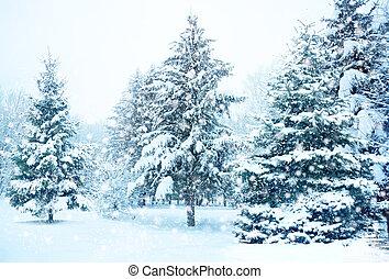 χιόνι , χριστουγεννιάτικο δέντρο