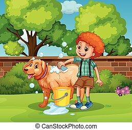 χορήγηση , αγόρι , πάρκο , σκύλοs , μπάνιο