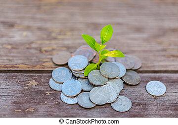 χρήματα , ανάπτυξη , δικό σου , κατάθεση , προϋπολογισμός , ...